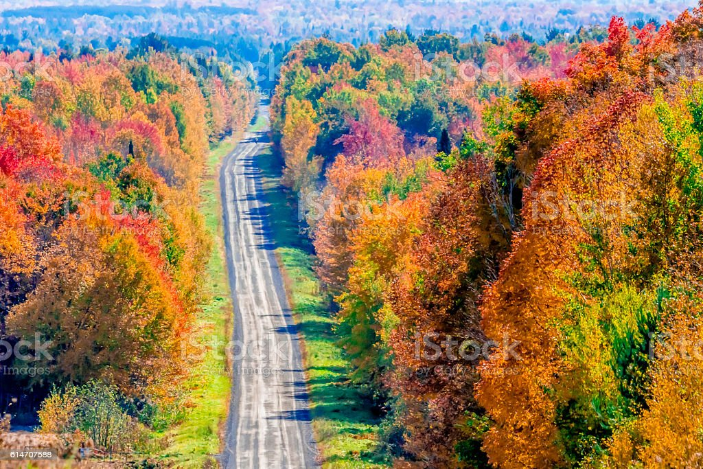Chemin d'automne stock photo