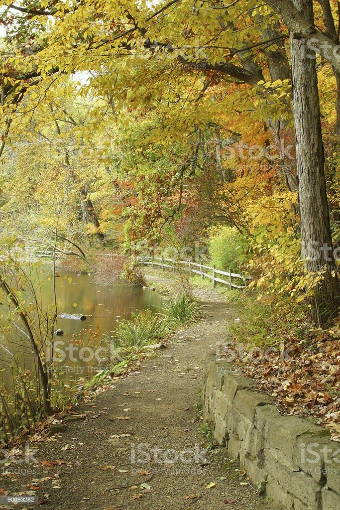 Autumn Pathway - Youngstown, Ohio royalty-free stock photo