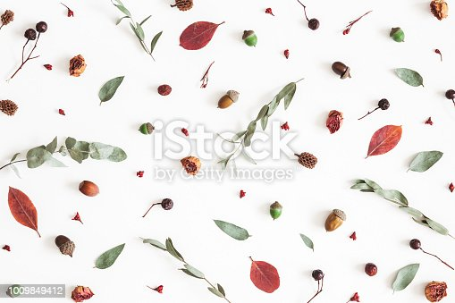 istock Autumn pattern on white background. Flat lay, top view 1009849412