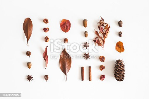 istock Autumn pattern on white background. Flat lay, top view 1009855050