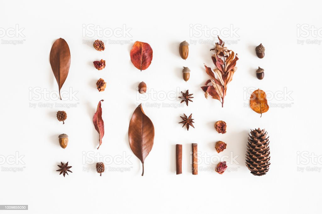 Autumn pattern on white background. Flat lay, top view stock photo