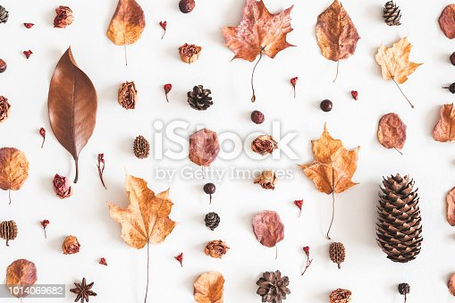 istock Autumn pattern on white background. Flat lay, top view 1014069682