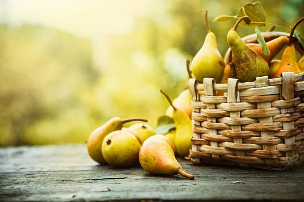 Autumn pears stock photo