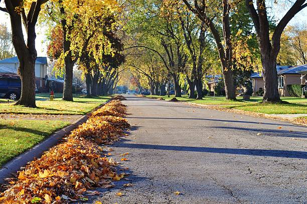 Autumn photo of street and leaf piles. Heaps of dry, leaves raked on bought sides of the street.  fire hydrant stock pictures, royalty-free photos & images