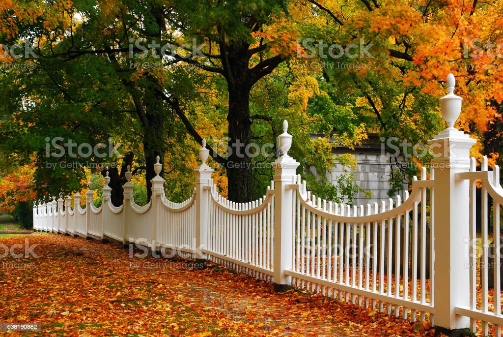 Autumn Picket stock photo