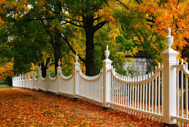 autumn picket - fence stock photos and pictures