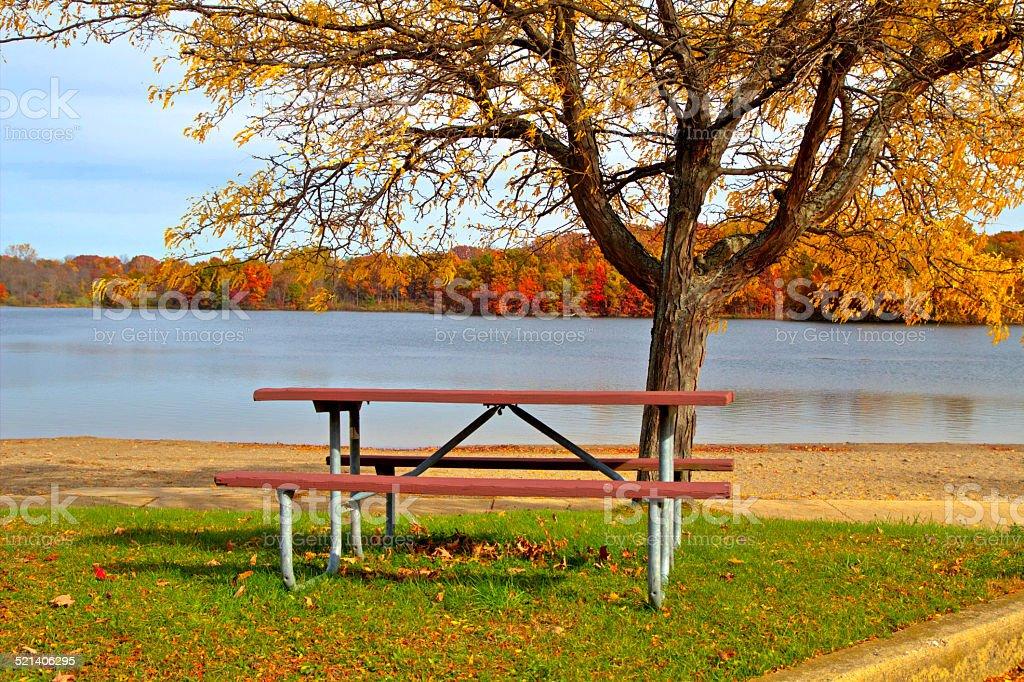 Autumn Picnic Along A Lakeshore Beach Stock Photo IStock - Picnic table michigan