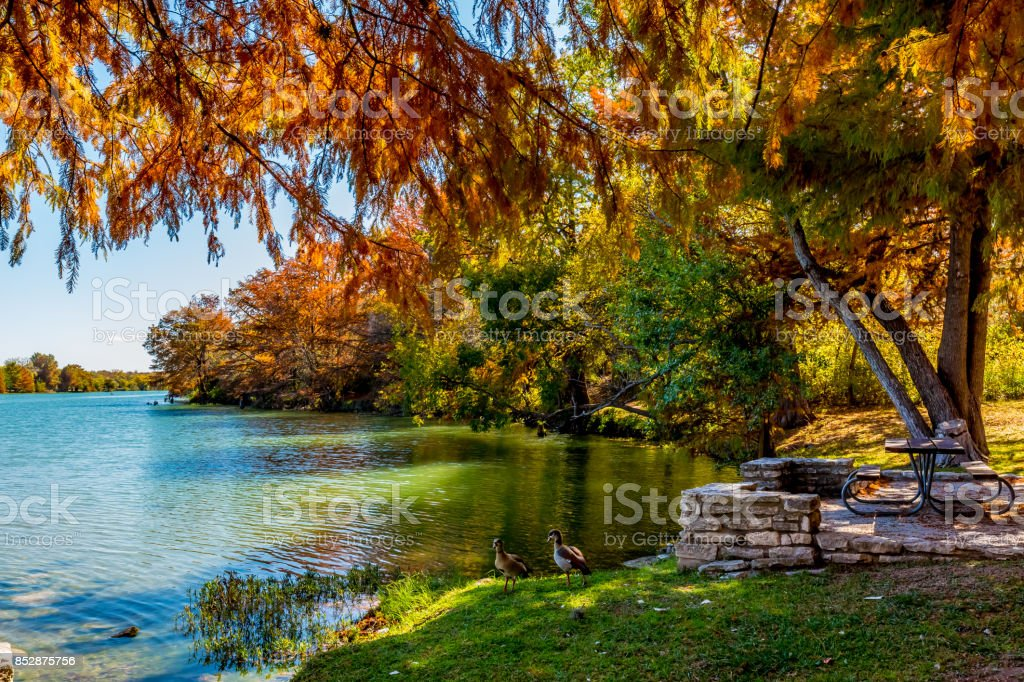 Autumn Picnic on the River in Texas. stock photo