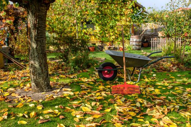 Herbst – Foto
