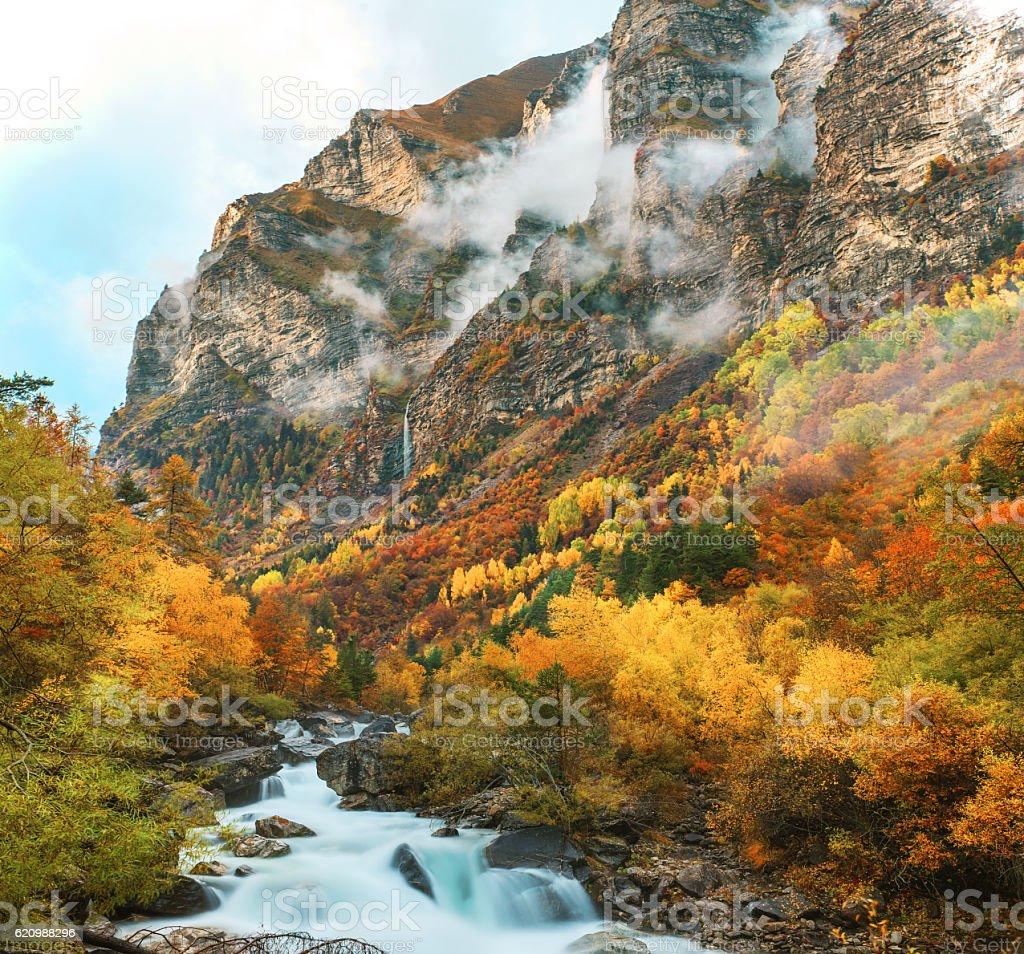 Outono  foto royalty-free