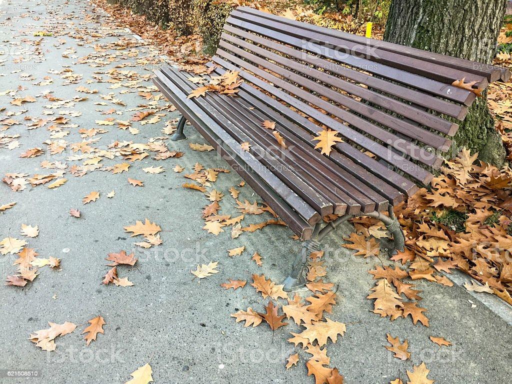 Den Herbst  Lizenzfreies stock-foto