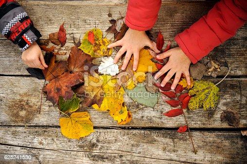 istock Autumn 625241530