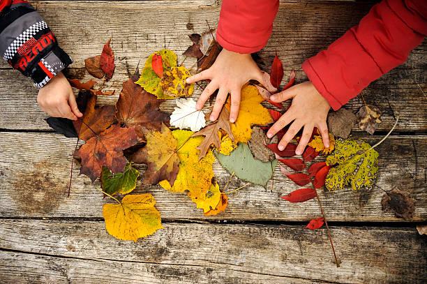 Autumn picture id625241530?b=1&k=6&m=625241530&s=612x612&w=0&h=jb 8yo2xihr9nhqzuialdhq o5hzjueyx7ijuzktd5q=
