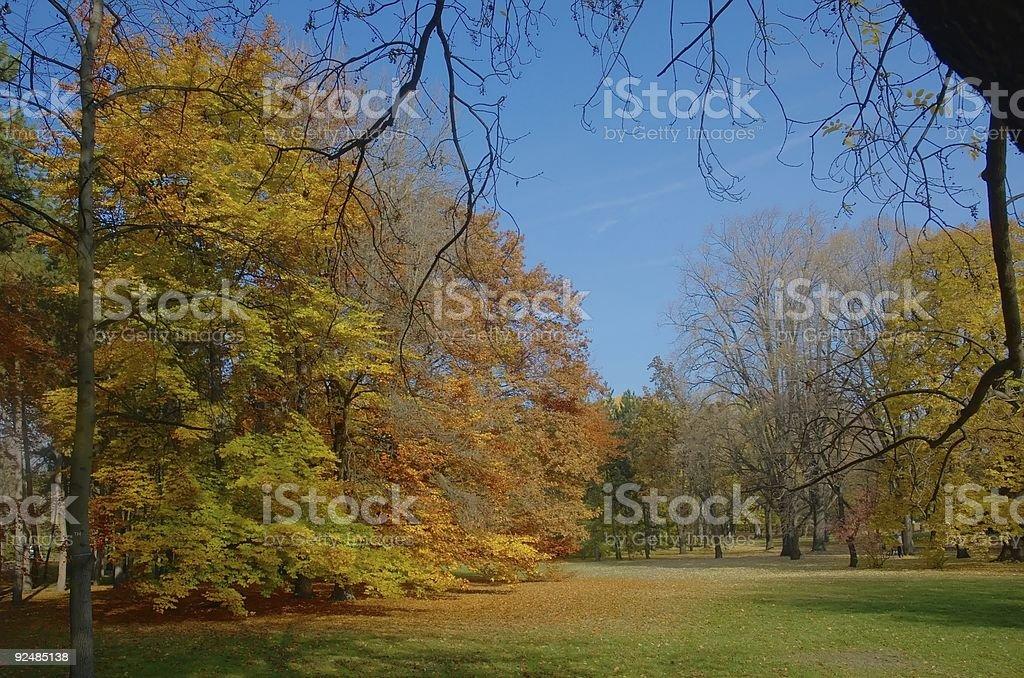 Autumn #1 royalty-free stock photo