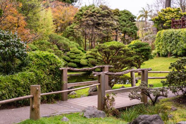 Autumn picture of Japanese Tea Garden in San Francisco. stock photo
