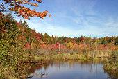 istock autumn pond 104687514