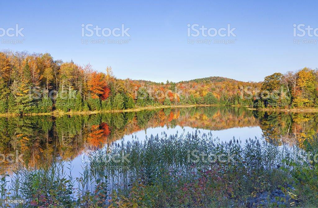 Autumn Pond royalty-free stock photo