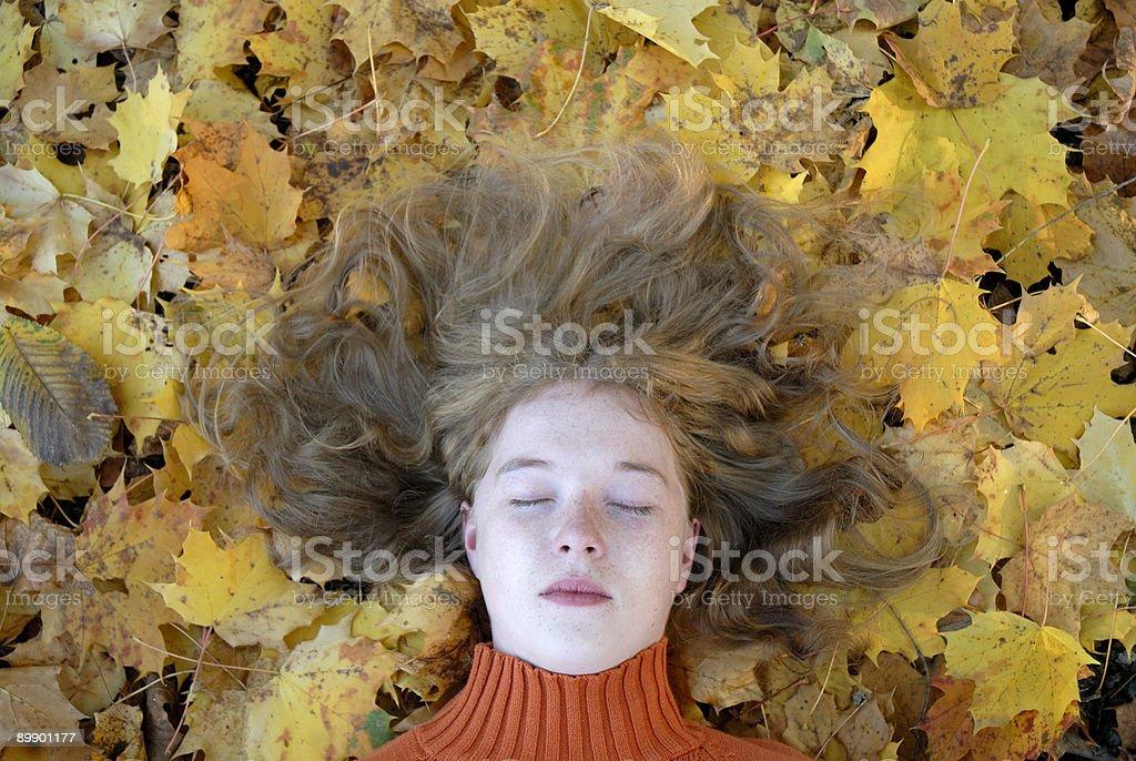 Herbst portrait Lizenzfreies stock-foto