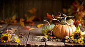 Autumn Thanksgiving pumpkin and leaf arrangement on old wood background