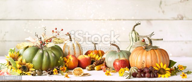 Autumn pumpkins, gourds and holiday decor arranged against an old white wood background. Very shallow depth of field for effect with plenty of copy