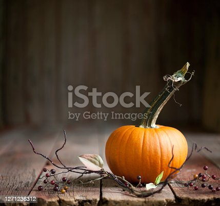 Autumn pumpkin against a wood background