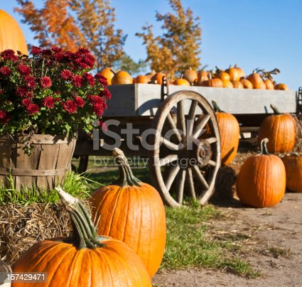 Autumn pumpkins, hay stack and wagon. Sunny fall afternoon.