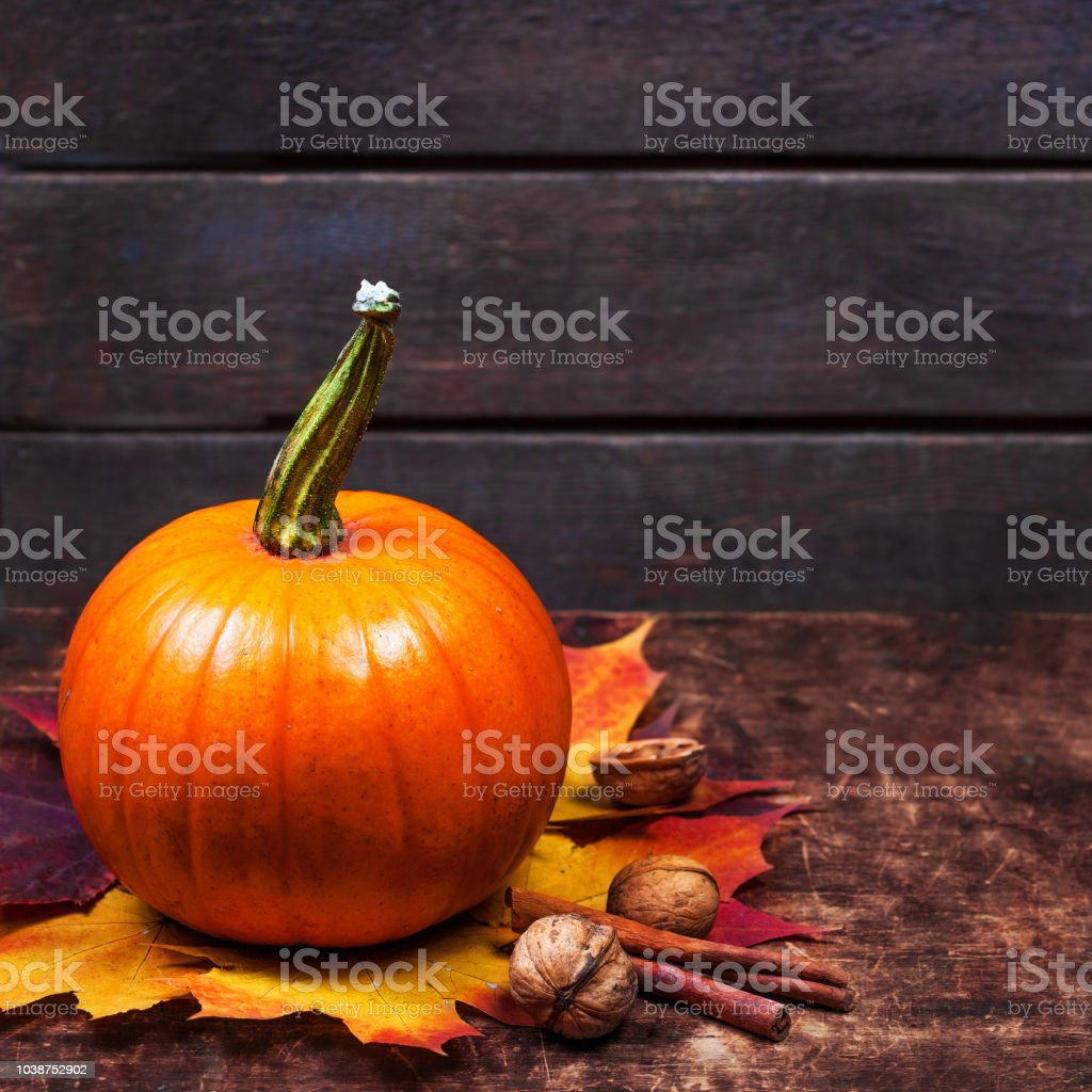 Autumn Pumpkin Thanksgiving Card with orange pumpkin  on wooden table with copy space'n stock photo
