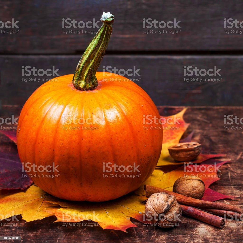 Autumn Pumpkin with yellow leaves and nuts. Thanksgiving Card with orange pumpkin  on wooden table with copy space'n stock photo