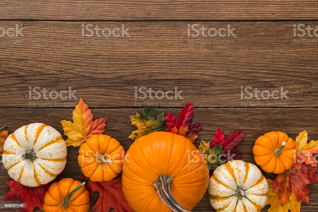 Autumn pumpkins and leaves on wooden board background stock photo