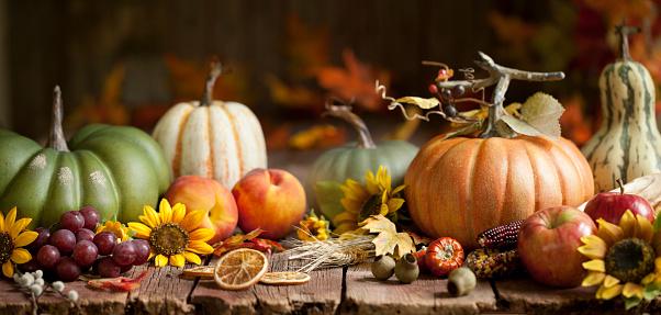 Autumn Pumpkins Background on Wood