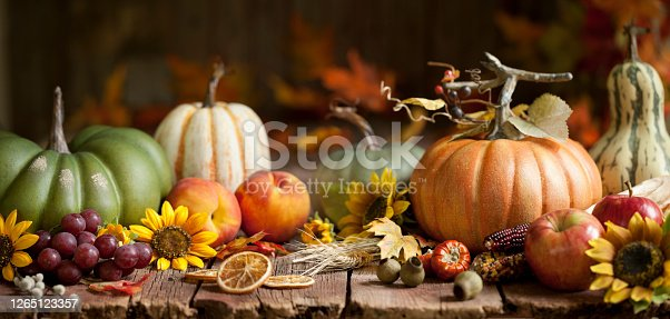 Autumn Pumpkins Background on Wood