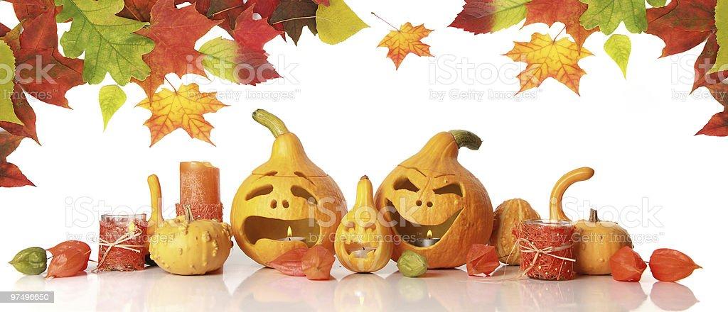 autumn pumpkins on white royalty-free stock photo
