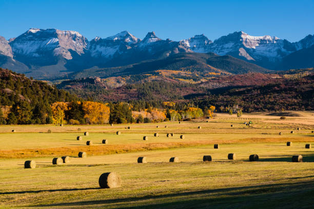 Autumn Ranch Autumn scene on a ranch near Ridgway, Colorado san juan mountains stock pictures, royalty-free photos & images