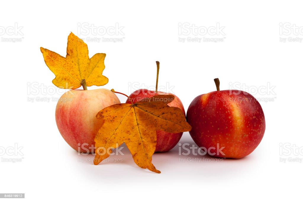Autumn, red apples leaves stock photo