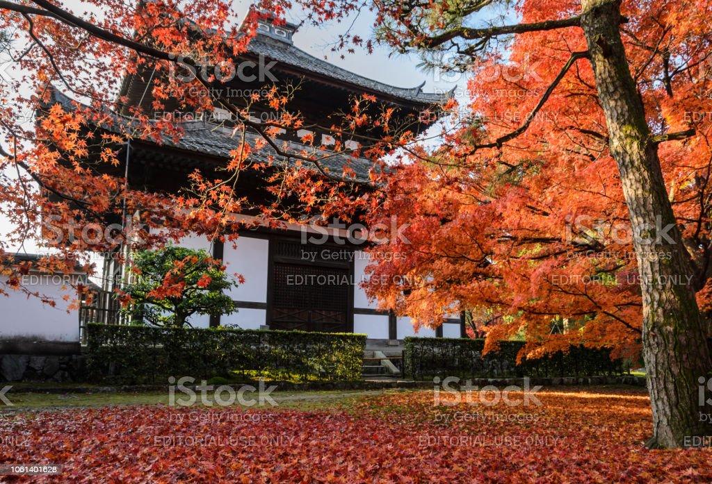 Im Herbst Rot fährt um Tofukuji Tempel in Kyoto, Japan – Foto