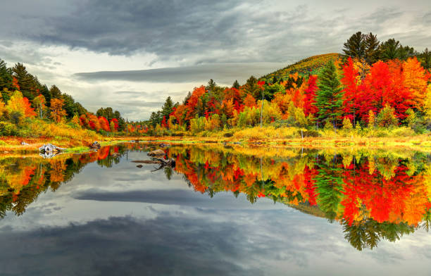 Autumn reflection in the White Mountains of New Hampshire Fall foliage reflecting on a small pond in the White Mountains National Forest in New Hampshire. white mountain national forest stock pictures, royalty-free photos & images