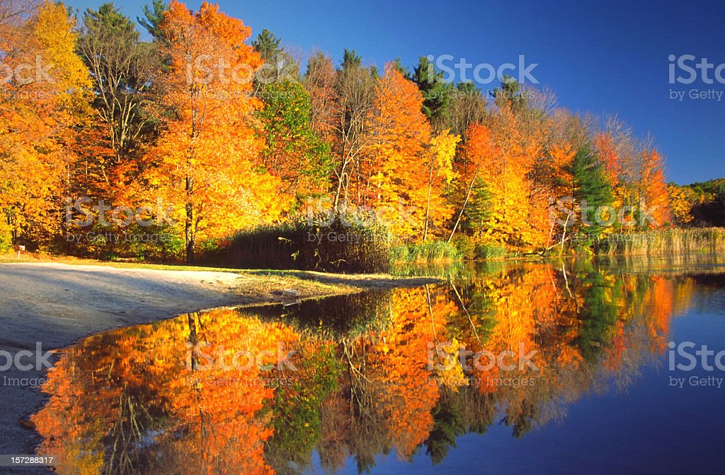 Autumn Reflection stock photo