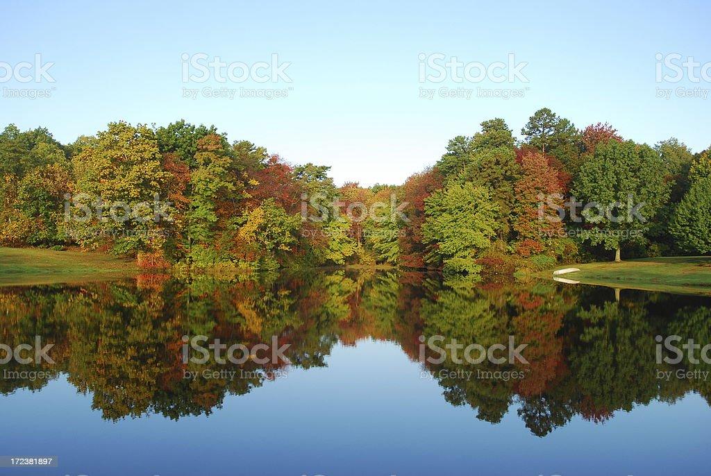 autumn reflectionleaves, royalty-free stock photo