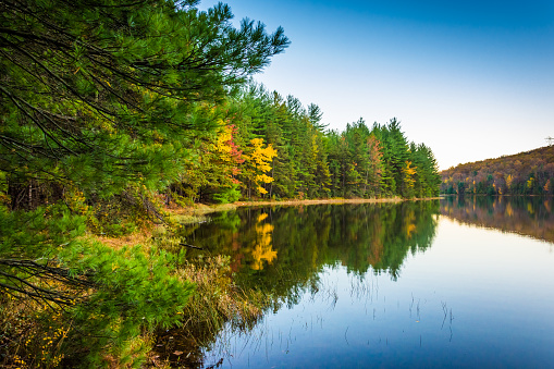 Autumn reflections in Long Pine Run Reservoir, in Michaux State Forest, Pennsylvania.