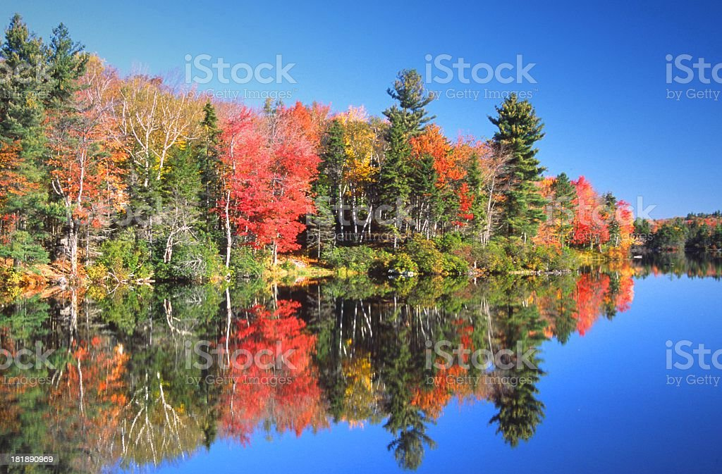 Autumn Reflections stock photo