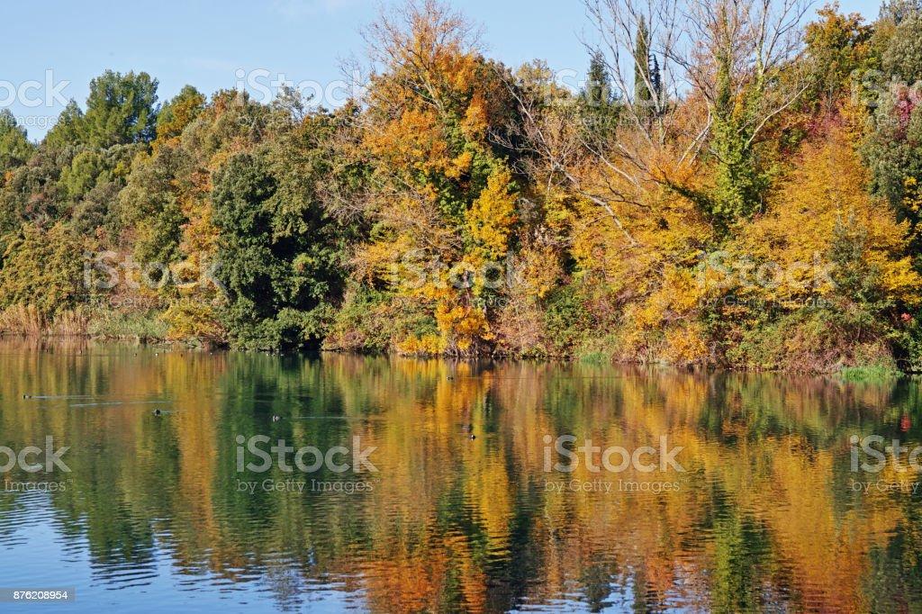 Autumn reflexes in a small lake stock photo