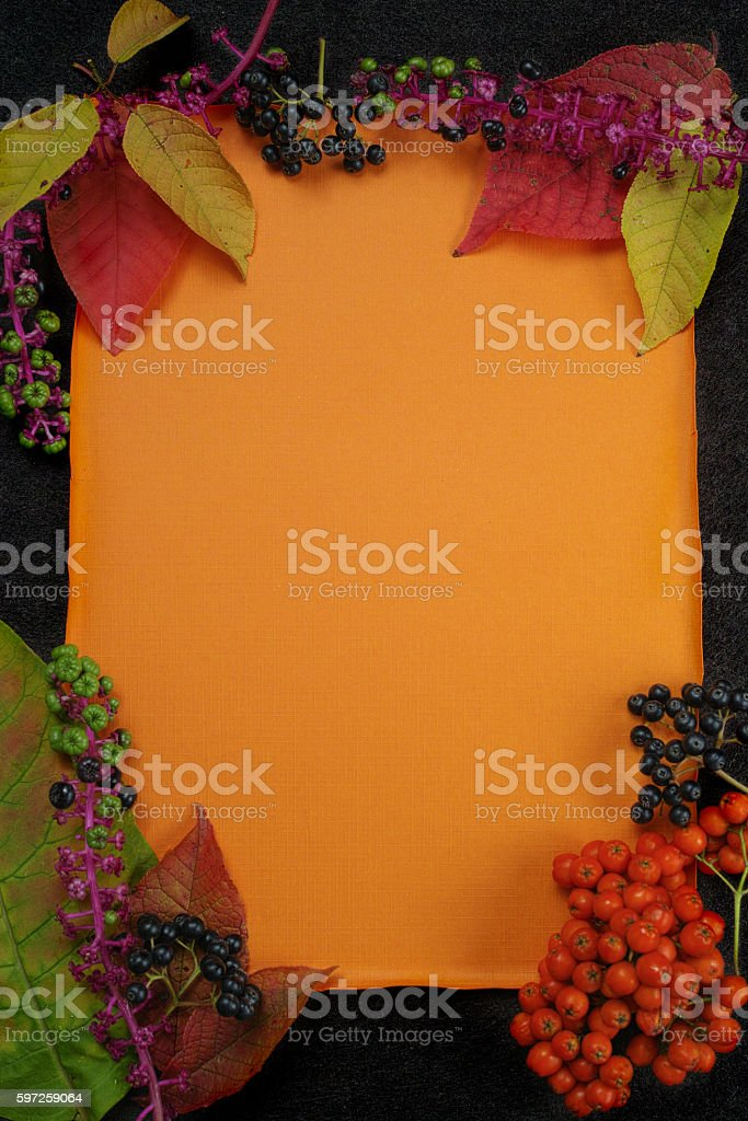 Autumn restaurant menu free text copy space with forest berries stock photo