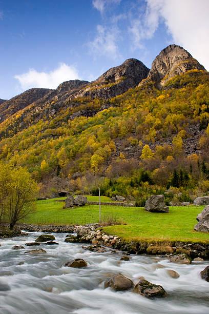 Autumn river. stock photo