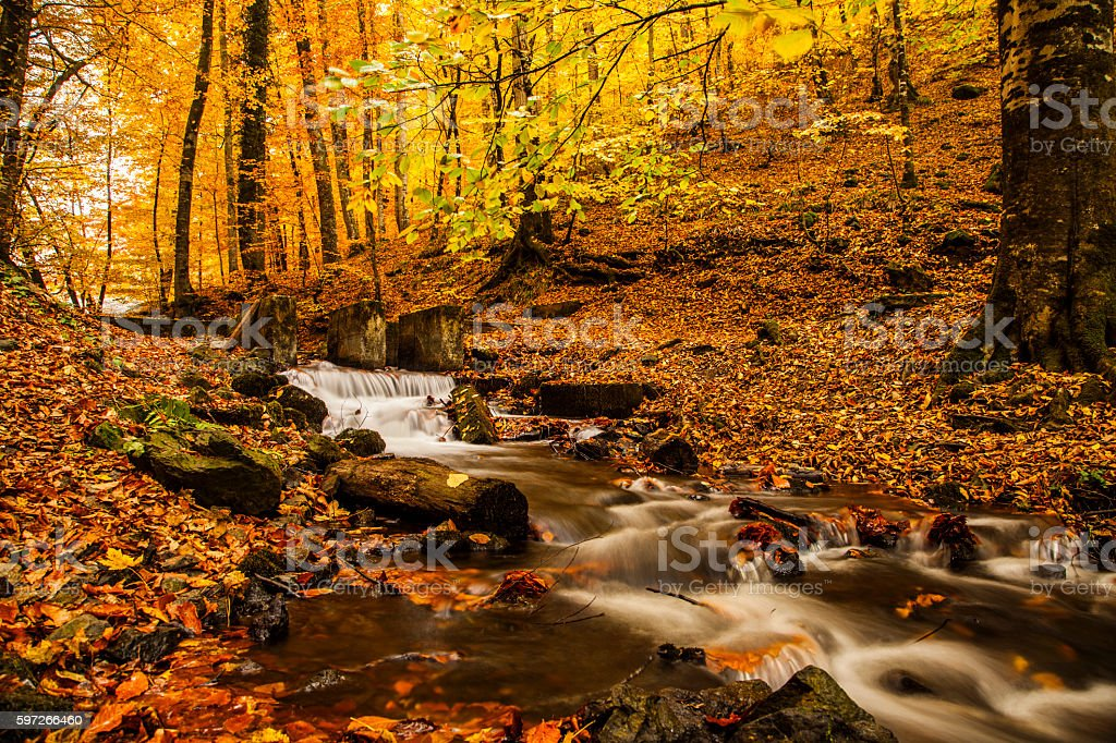 Herbst River Lizenzfreies stock-foto