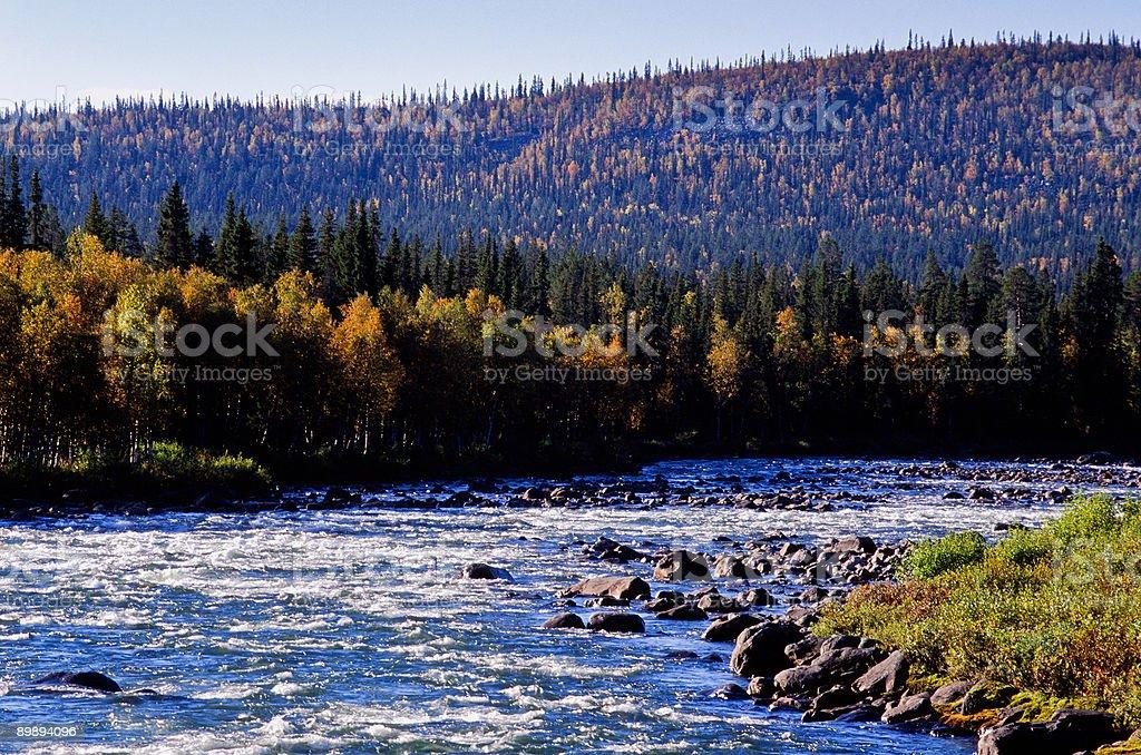 Autumn river royalty-free stock photo