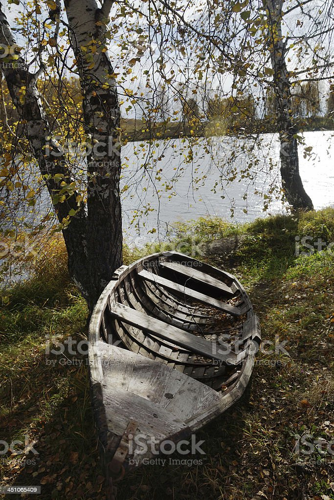 Autumn riverbank with birches and old boat royalty-free stock photo
