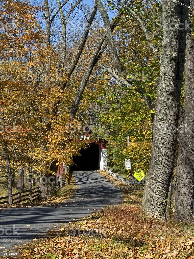 Autumn Road Covered Bridge royalty-free stock photo