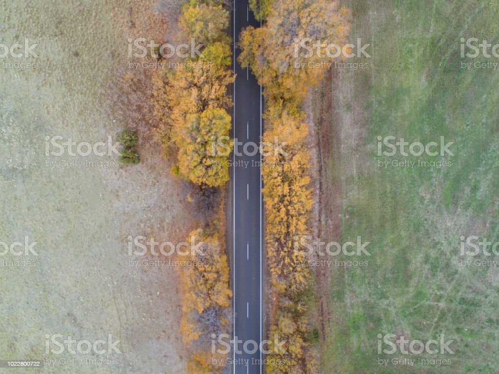 Aerial photograph of some autumn road on a country road in Tasmania,...