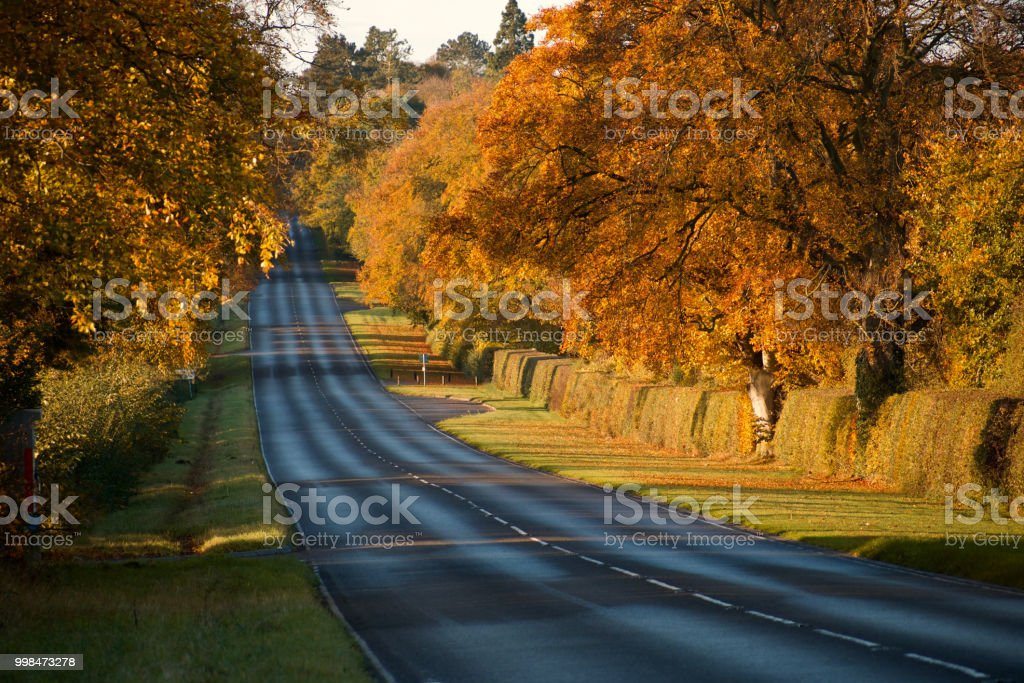 Autumn road in England stock photo