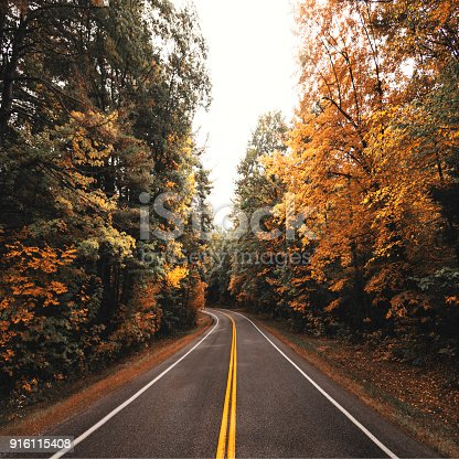 autumn road in new england